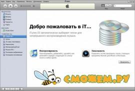 iTunes 8.2