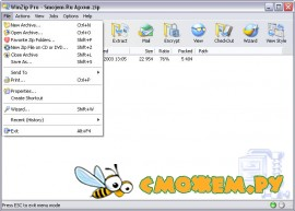 WinZip 14.0