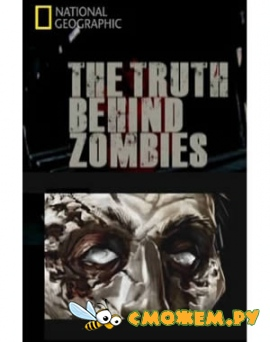 ������ � ����� / The truth behind zombies