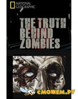Правда о зомби / The truth behind zombies
