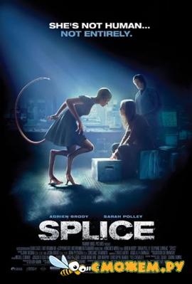 ������ / Splice