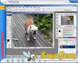 ������������� ���� Adobe Photoshop CS3