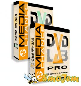 DVD-lab Pro 2.4 ������� ������