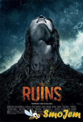 Руины / Ruins