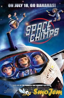 �������� � ������� / Space Chimps